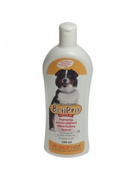 Areionvet Benpro Foaming Gel 200ml