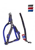 "Fekrix Janes And Nylon Leash And Harness 10mm 48"" 12-16 Inch"