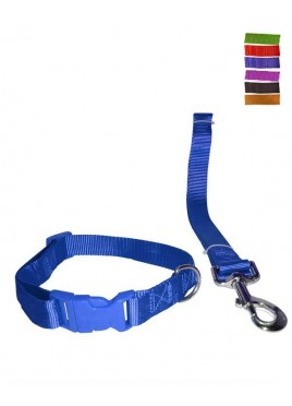 Fekrix 1 Plain Nylon Collar And Leash For Dogs 10mm 48 inch 12 Inch