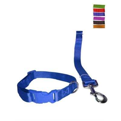 "Fekrix 1 Plain Nylon Collar And Leash For Dogs 10mm 48"" 12 Inch"