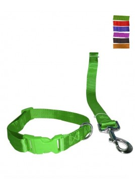 Fekrix 1 Plain Nylon Collar And Leash For Dogs 15mm 48 inch 16 Inch