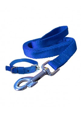 Fekrix Premium Blue Nylon Lease With Collar 0.75 Inch