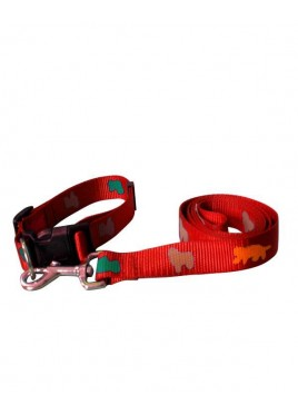 Fekrix Premium Print Leash with Collar Red 1 Inch