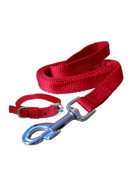 Fekrix Premium Red Nylon Lease With Collar 0.75 Inch
