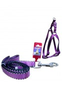 "Fekrix 2 Line Leash And Harness 48"" 16-24 Inch"