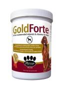 Mervue Goldforte Minerals and Vitamins Feed Supplement For Dog 1kg