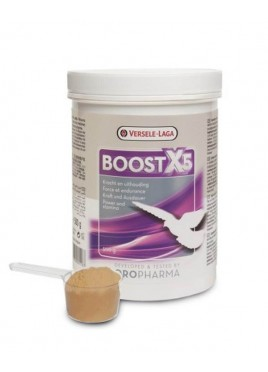 Versele Laga Boost X5 Supplement For Bird 500 gm