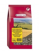 Versele Sunflower Seed 2.5 KG For Bird