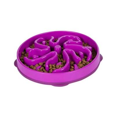 Outward Hound Fun Feeder Mini Slow Feed Dog Bowl Purple