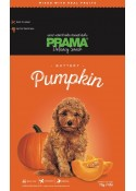 Prama buttery pumpkin delecacy snack for dogs 70 gm