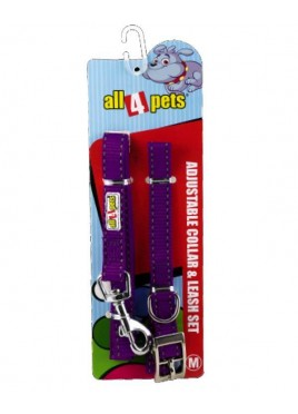 All4pets Nylon Collar And Lead Set With Radium For Dog