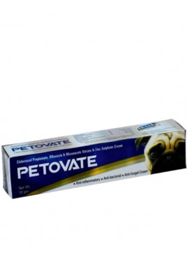All4pets Petovate Ointment 20 gm