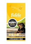 Fidele Puppy Food For Large Breed - 15 kg