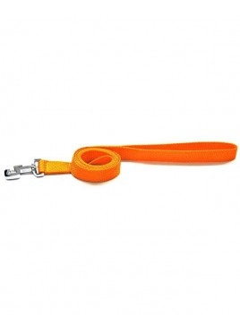 Kennel Doggy Nylon Dog Leash 48 Inch
