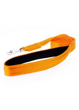 Kennel Doggy Pattern Soft Nylon Leash For Dog 11/4