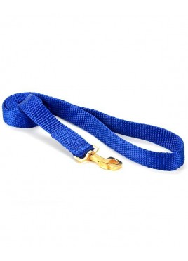 Kennel Doggy Premium Nylone Leash 1