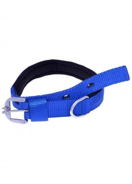 Kennel Doggy Padded Nylon Collars 1 inch