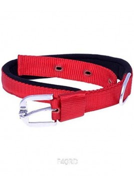 Kennel Doggy Padded Nylon Collars 11/4 inch