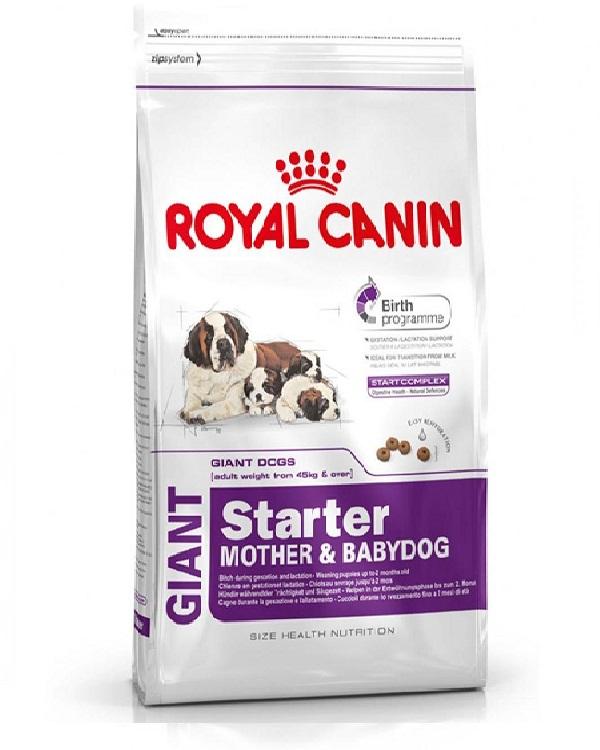 buy starter dog food for giant breeds 1 kg royal canin. Black Bedroom Furniture Sets. Home Design Ideas