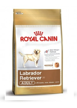 Royal Canin Adult Dog Food For Labrador Retriver 3 kg