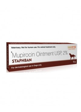 Sava Healthcare Stapban Ointment 15 gm