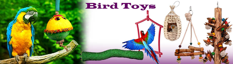 Bird Toy Outlet : Bird toys online toy for in india store